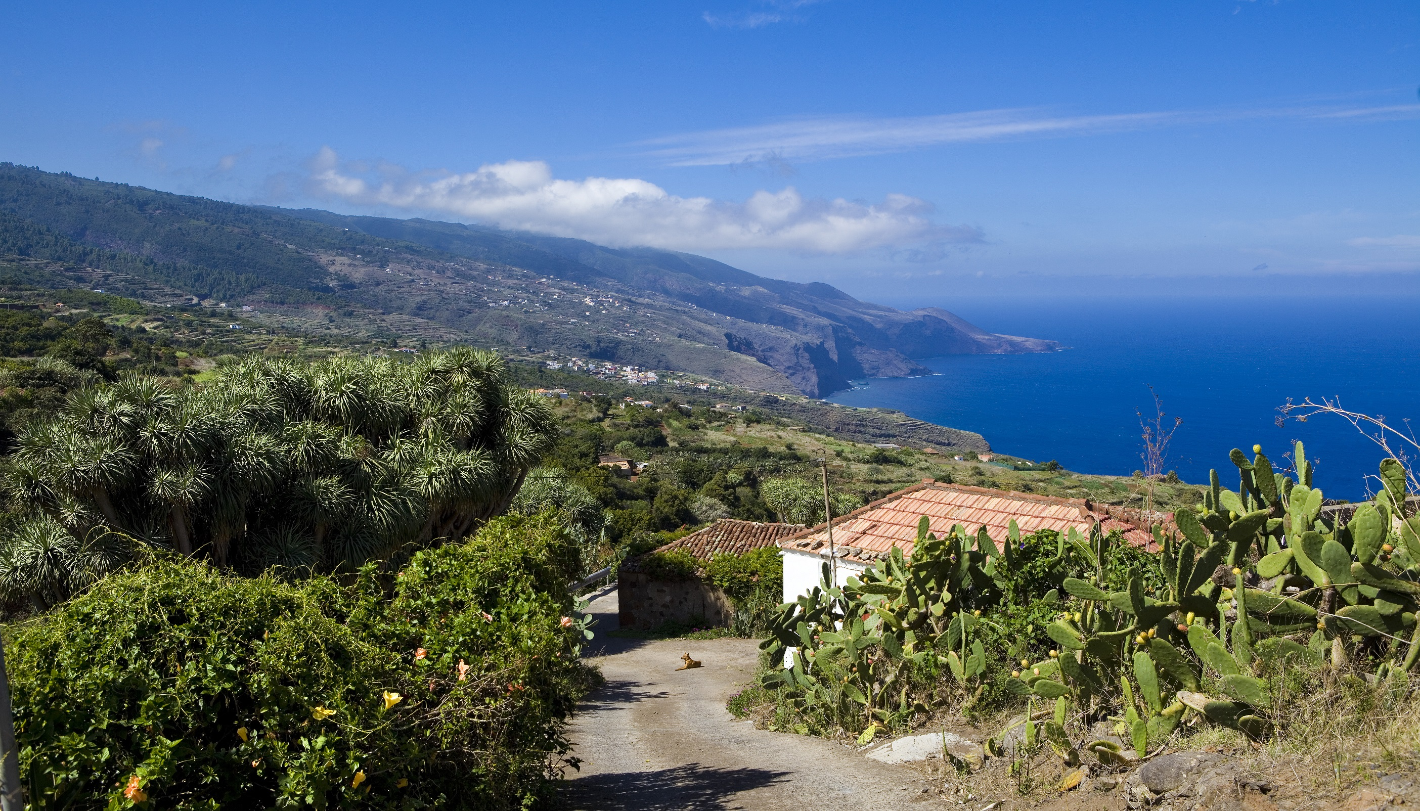 Ofertas de Viajes a La Palma