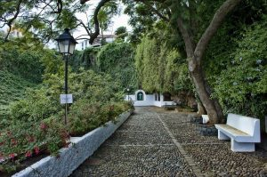 Visit La Palma: Puntallana en La Palma
