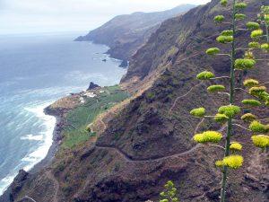 Visit La Palma: Villa de Garafía en La Palma