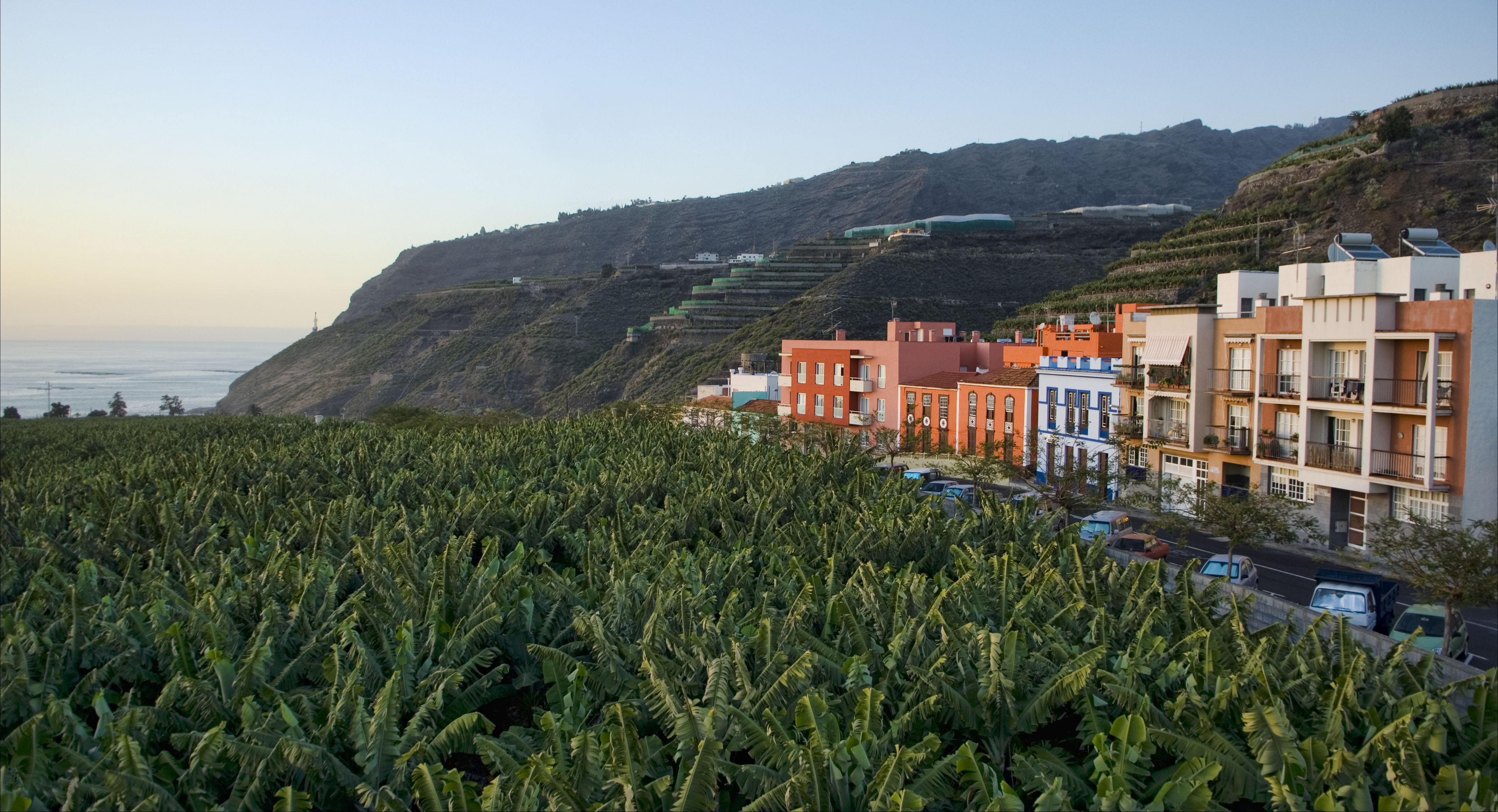Visit La Palma - Villa y Puerto de Tazacorte