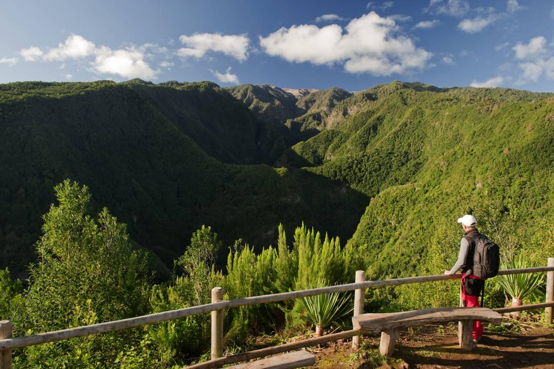Visit La Palma - Pared Vieja – Túnel Viejo (ruta MTB)