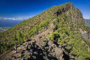 Visit La Palma: Valencia – Pico Bejenado (PR LP 13.3) en La Palma
