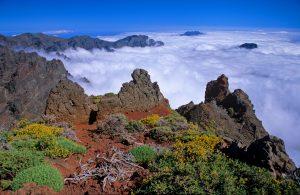 Visit La Palma: Mar de nubes en La Palma