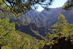 Visit La Palma: Parque Nacional de La Caldera de Taburiente en La Palma