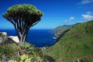 Visit La Palma: Ruta norte en La Palma