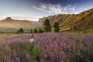 Visit La Palma: La miel en La Palma
