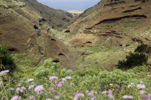 Visit La Palma: Juan Adalid en La Palma