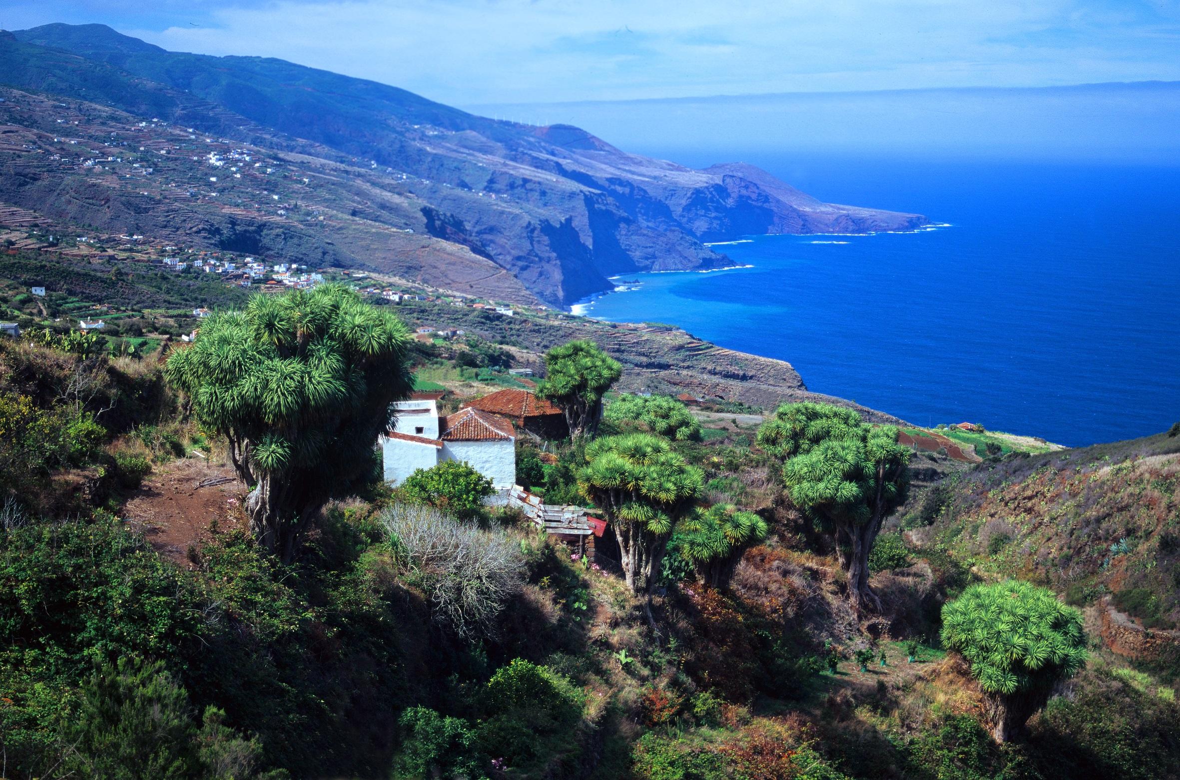 Visit La Palma - Las Toscas – Gallegos (parte de la etapa 3 del GR 130)