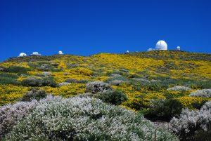 Visit La Palma: Roque de los Muchachos en La Palma