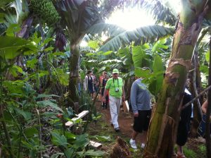 Visit La Palma: Realiza … actividades Starlight en La Palma