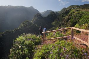 Visit La Palma: Barrancos en La Palma