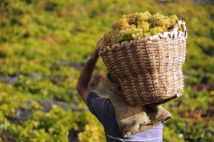 Visit La Palma: Artesanía con sabor en La Palma