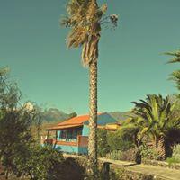 Visit La Palma - Apartamentos Finca Montemar