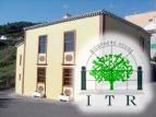 Visit La Palma - Casa Nacientes: Cordero