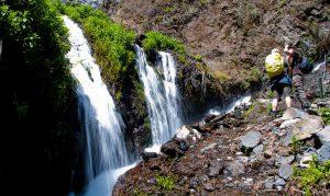 Visit La Palma: Parque Natural de Las Nieves – Nacientes de Marcos y Cordero en La Palma
