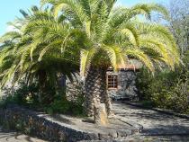 Visit La Palma - Casa Dos Caminos