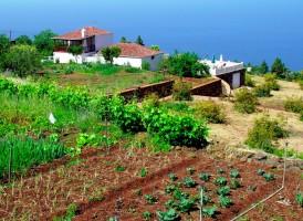 Visit La Palma - Casa Las Tierras Viejas