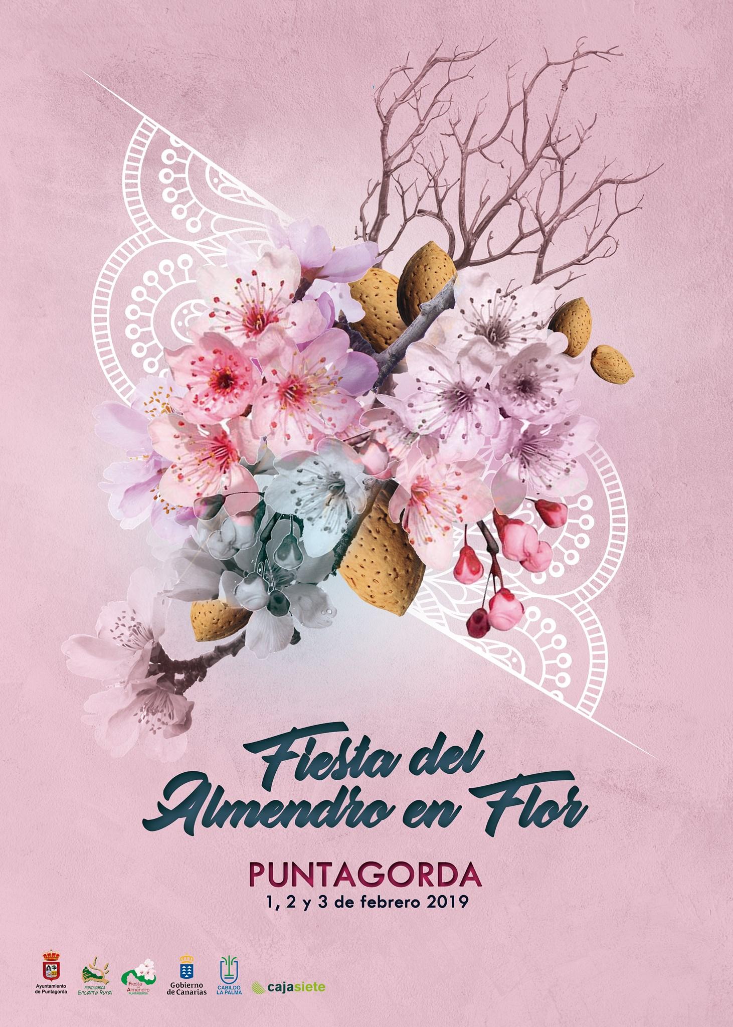 Visit La Palma - Fiesta del almendro en flor (Puntagorda)