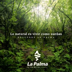 Visit La Palma: Vivir como sueñas en La Palma